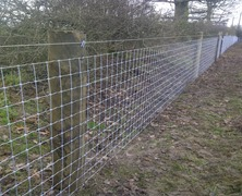 Clearance and fencing works for Breen Equestrian